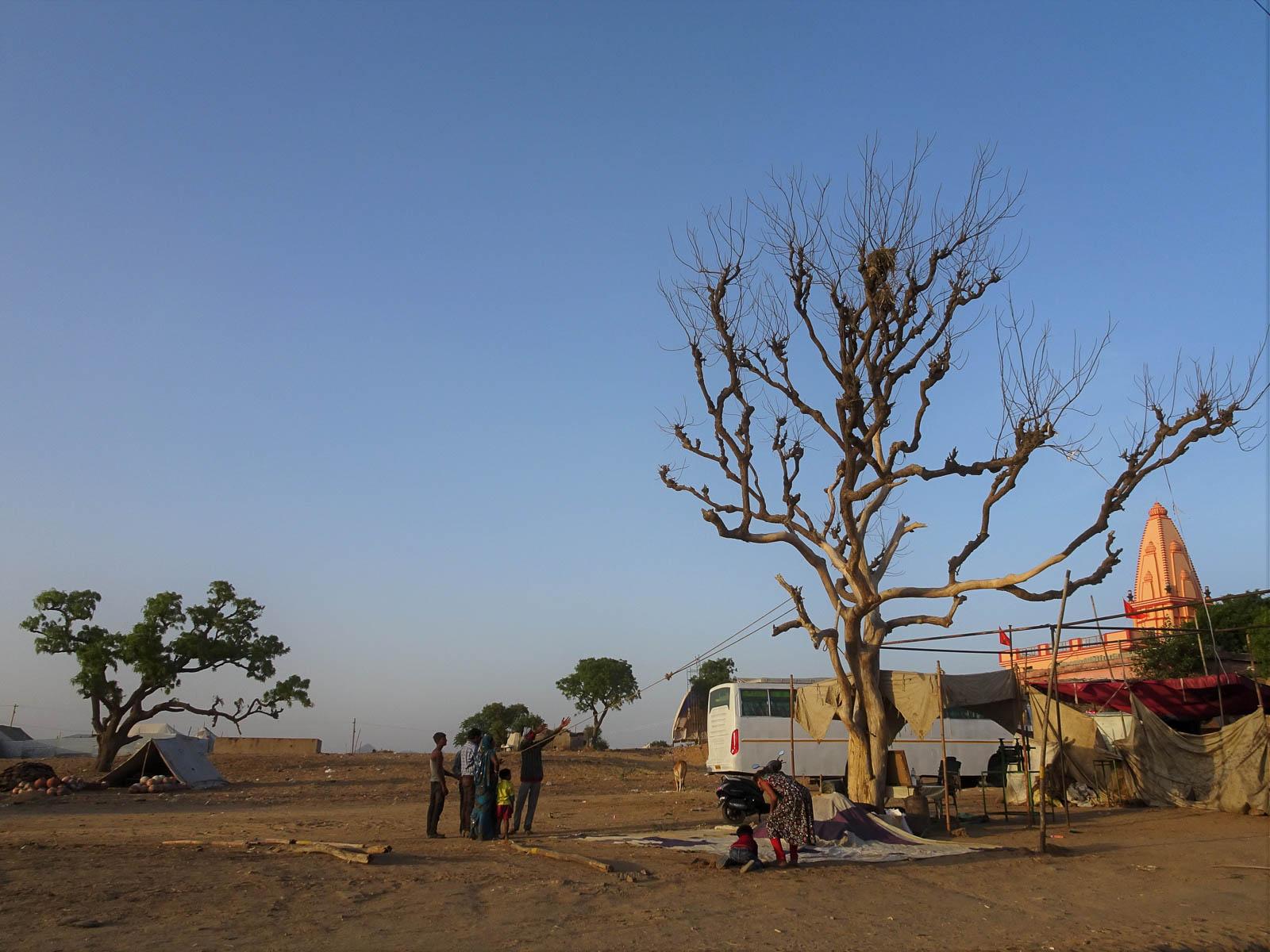 1023_Pushkar-camel-fair-60.jpg