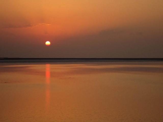 1028_White-desert-4.jpg