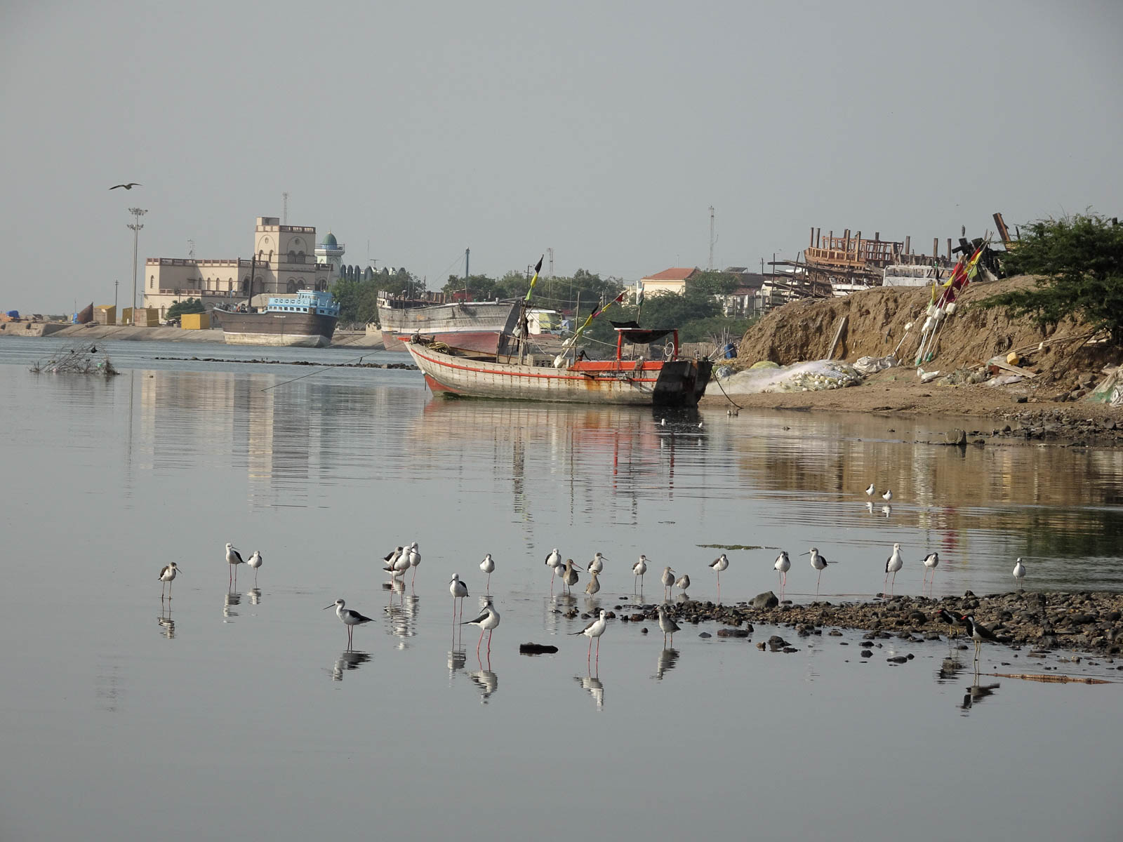 1030_Mandvi_Boat-16.jpg