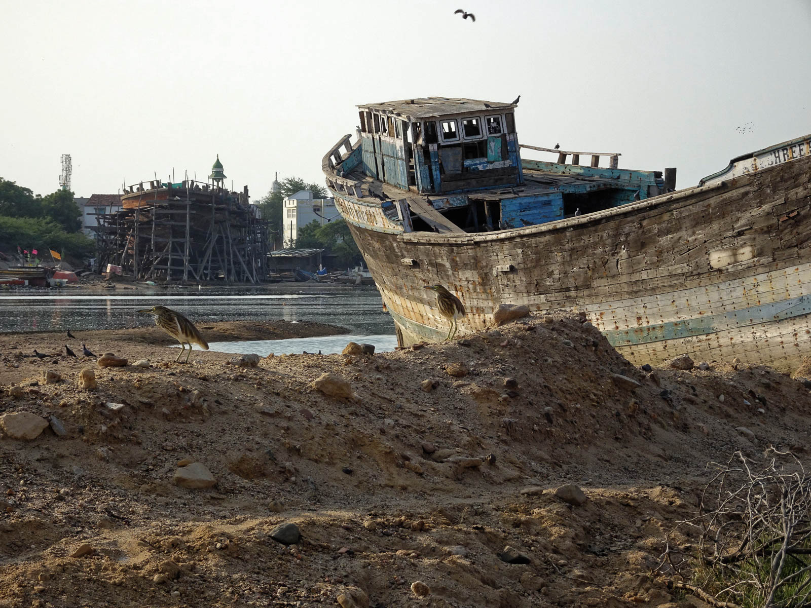 1030_Mandvi_Boat-3.jpg