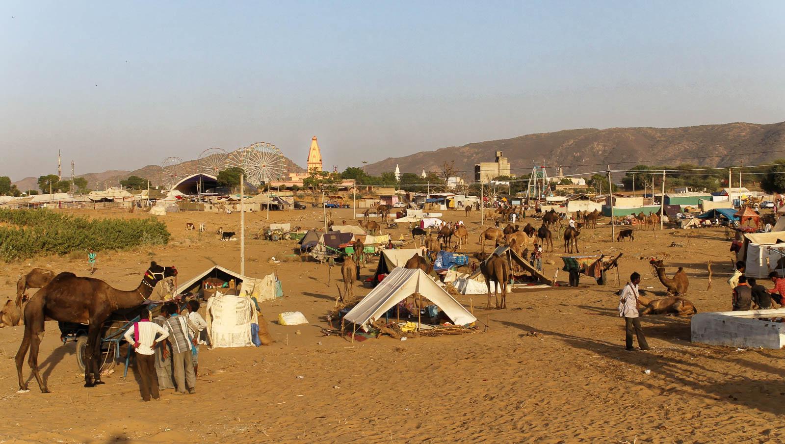 1023_Pushkar-camel-fair-0.jpg