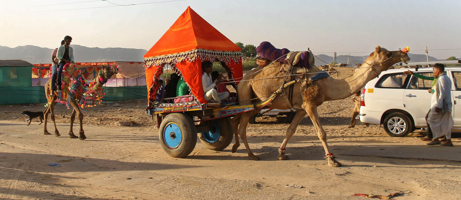 1023_Pushkar-camel-fair-14.jpg