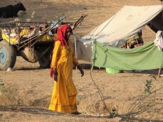 1023_Pushkar-camel-fair-30.jpg