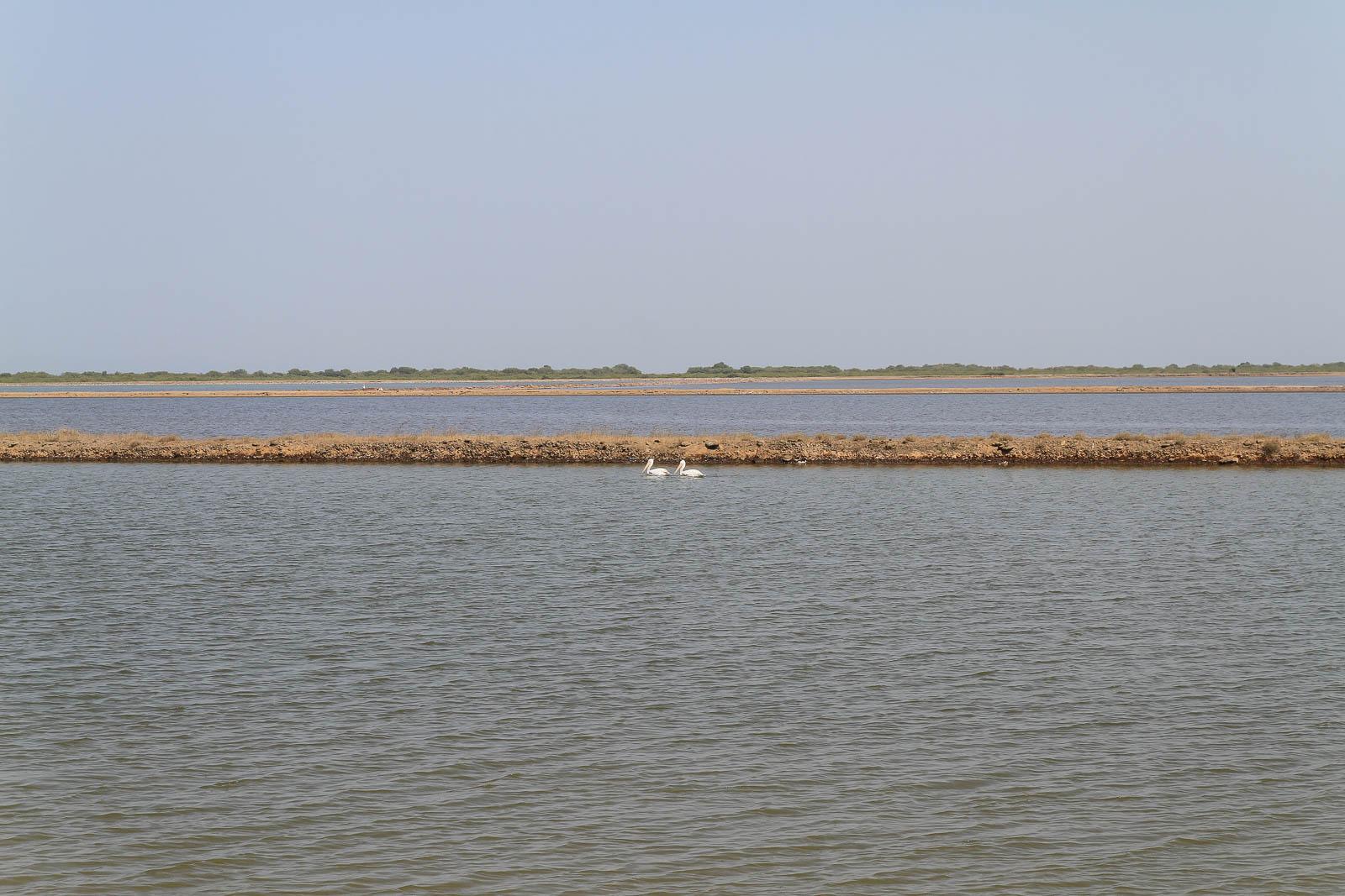 1031_Narara-Marine-reserve-2.jpg
