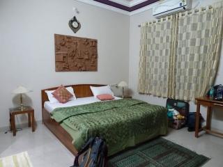 1109Udaipur-15.jpg